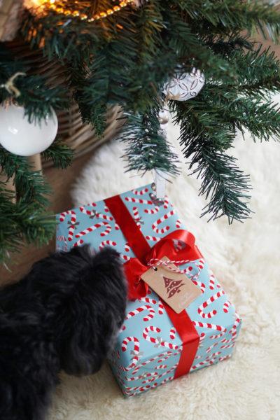 Unboxing The Beauty Bakery Santa's Box
