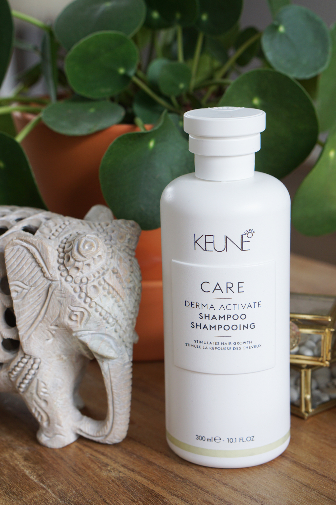 Keune Care, Derma Activate & Vital Nutrition