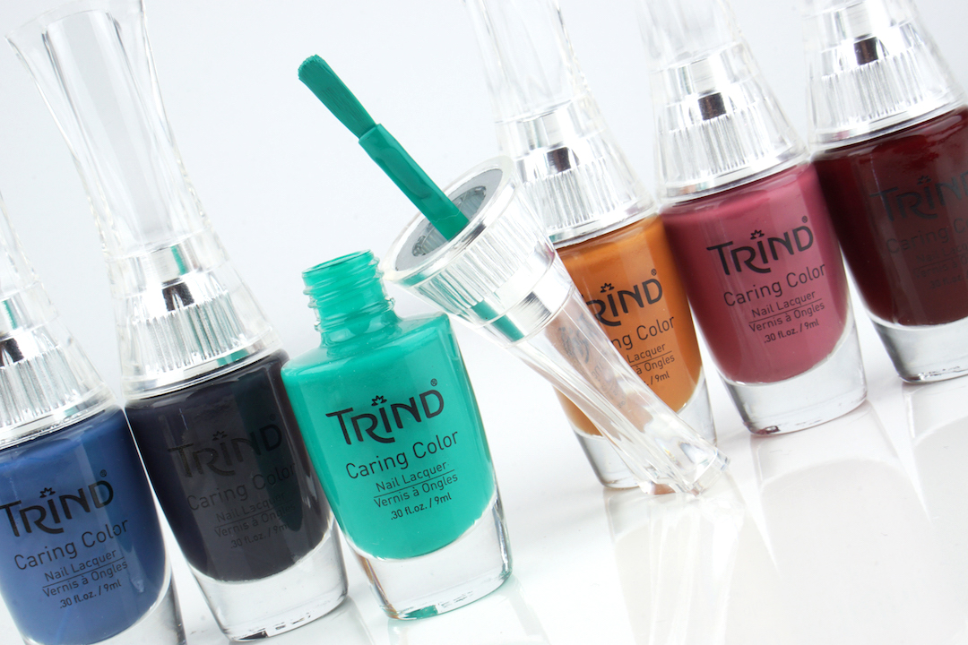 TRIND 'Winter in New Delhi' swatches